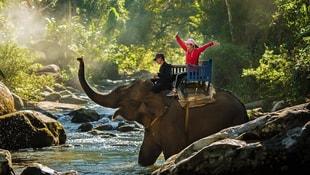 Vahşi doğaya hazır mısınız? İşte Sri Lanka...