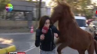 Show TV muhabirine saldıran ata esnaf sahip çıktı