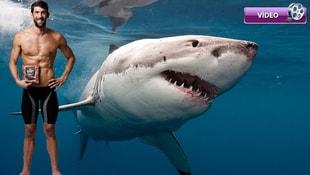 Phelps, köpek balığına iki saniye farkla yenildi!