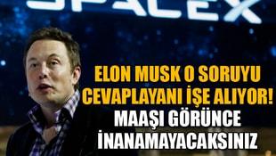 Elon Musk o soruyu cevaplayanı işe alıyor! Maaşı görünce inanamayacaksınız