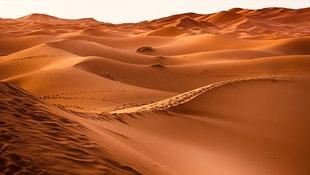 Suudi Arabistanda 85 bin yıllık keşif