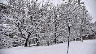 Gümüşhanede okullara kar tatili