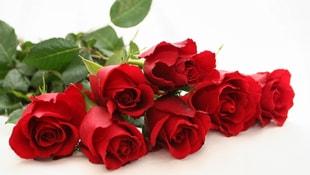 Sevgililer günü nedir? En güzel sevgililer günü mesajları