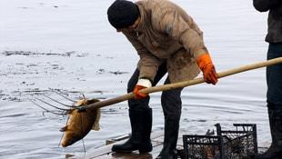 Dondurucu soğukta sal ile balık avı