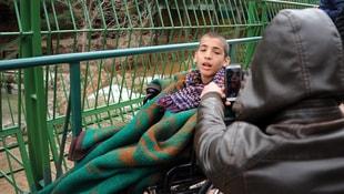 Suriyeli engelli çocuklar ilk kez hayvanat bahçesi gördü