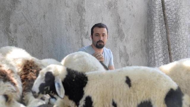 Bedelli askerlik parası için hayvanlarını satışa çıkardı