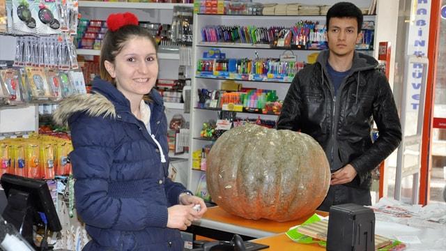 60 kilogram ağırlığında bal kabağı yetiştirdi