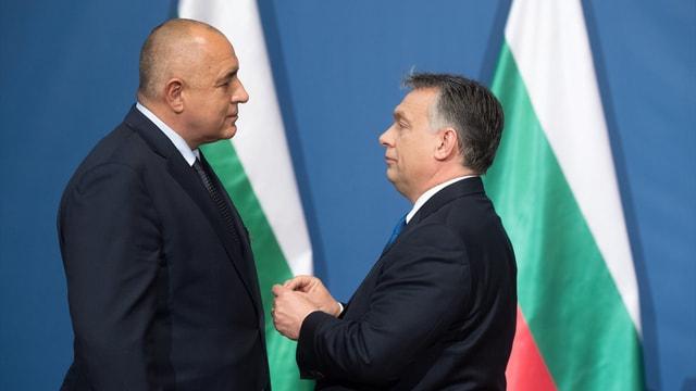 Macaristan'dan Bulgaristan Başbakan'ına devlet nişanı