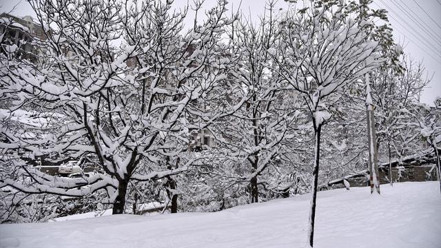 Gümüşhane'de okullara kar tatili