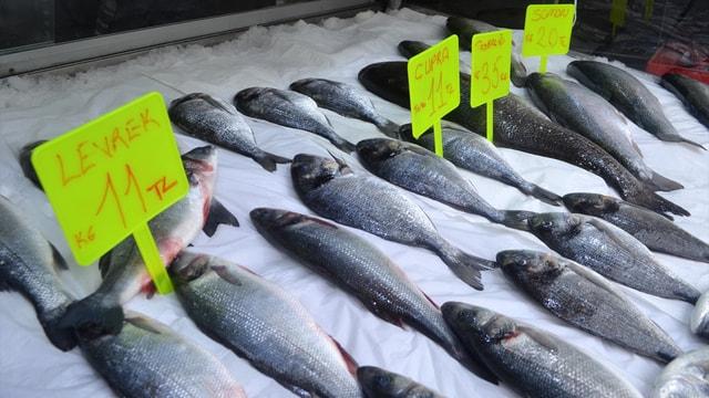 Tezgahlar kültür balığına kaldı