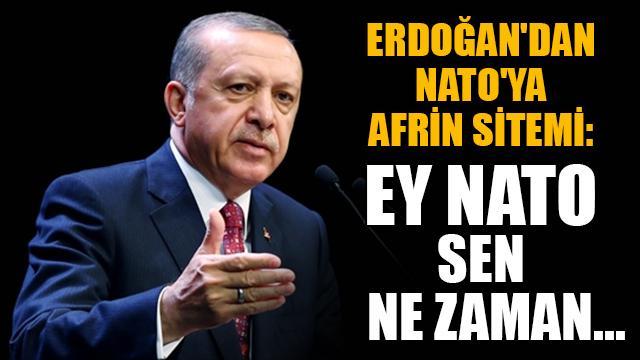 Erdoğandan NATOya Afrin sitemi: Ey NATO sen ne zaman...
