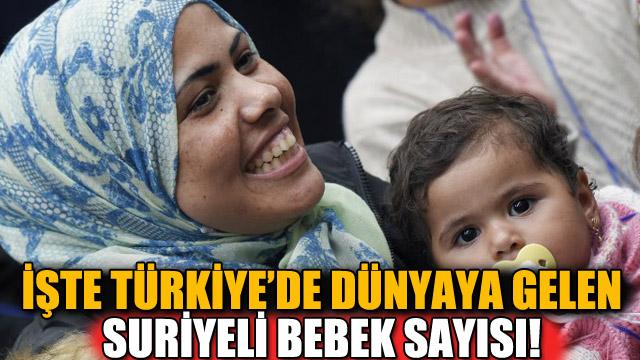 Türkiyede 276 bin Suriyeli dünyaya geldi