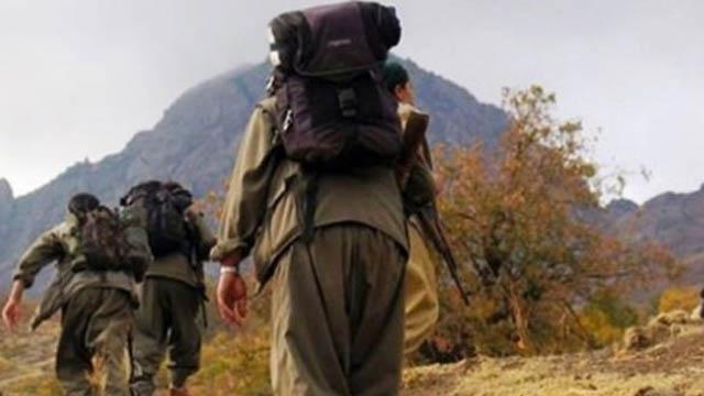 PKKya ağır darbe! Öldürüldü